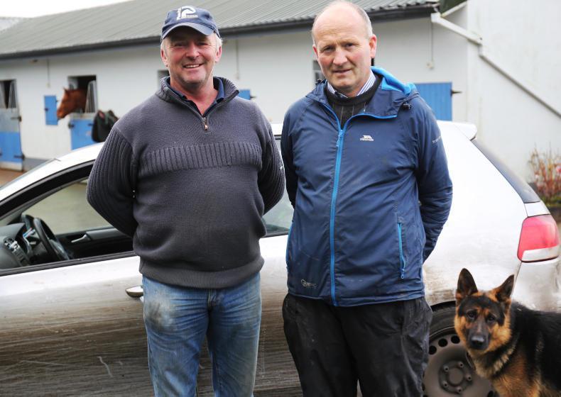 WEST OF THE SHANNON: Philip McManus - Galway's supervet