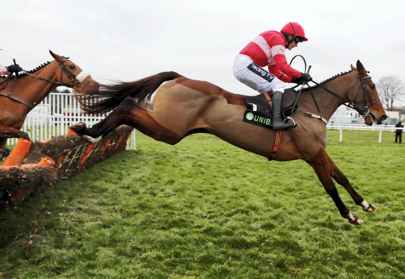 SIMON ROWLANDS: Is Laurina Champion Hurdle good?