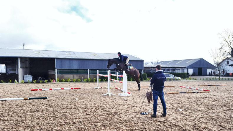 EDUCATION FEATURE 2019: Equine Science at Univeristy Limerick