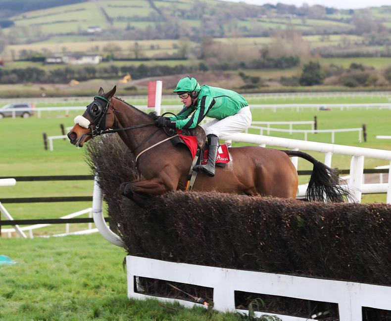 PUNCHESTOWN SUNDAY: Felix Desjy gets back on track