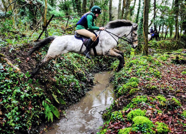 PONY TALES:  Fun ride raises funds for hospice