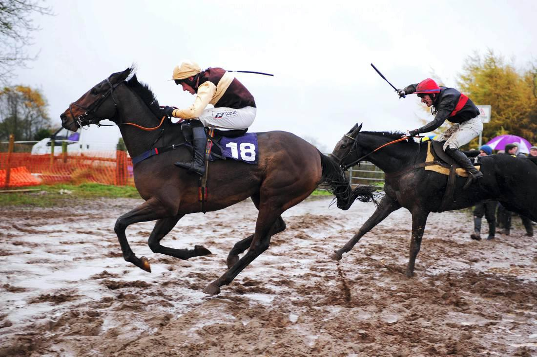 Roger Brookhouse pays £130,000 for Irish point-to-point winner at Cheltenham