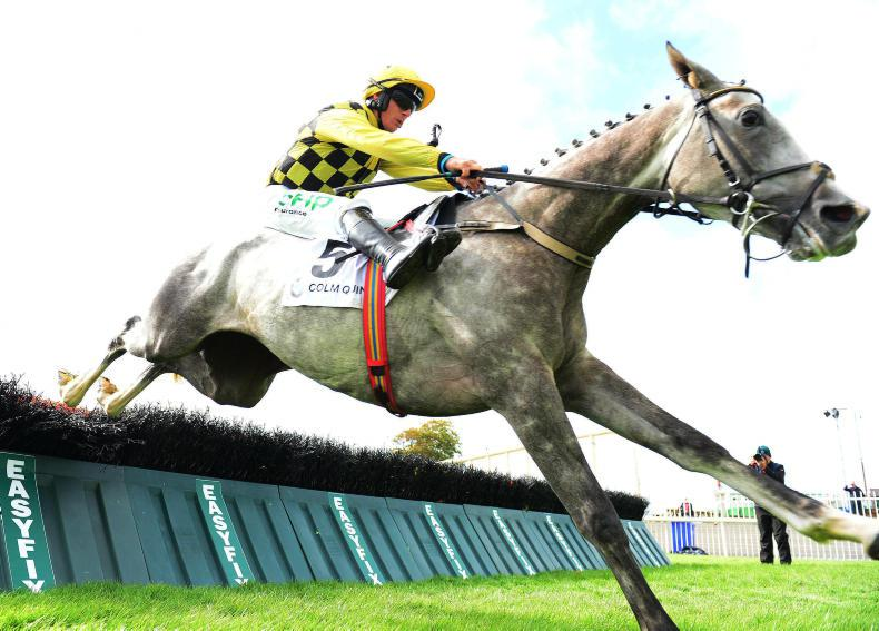 TATTERSALLS IRE FEBUARY SALE PREVIEW: Plenty of quality on offer