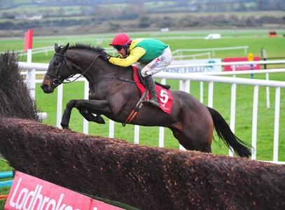 Sizing John pencilled in for racecourse spin ahead of competitive return
