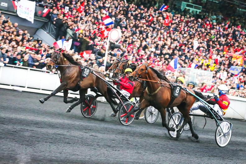 HARNESS RACING: D'Amerique a four horse race?