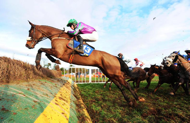 POINT-TO-POINT: KILLEAGH HARRIERS BOULTA: Sweeney stays aboard to win