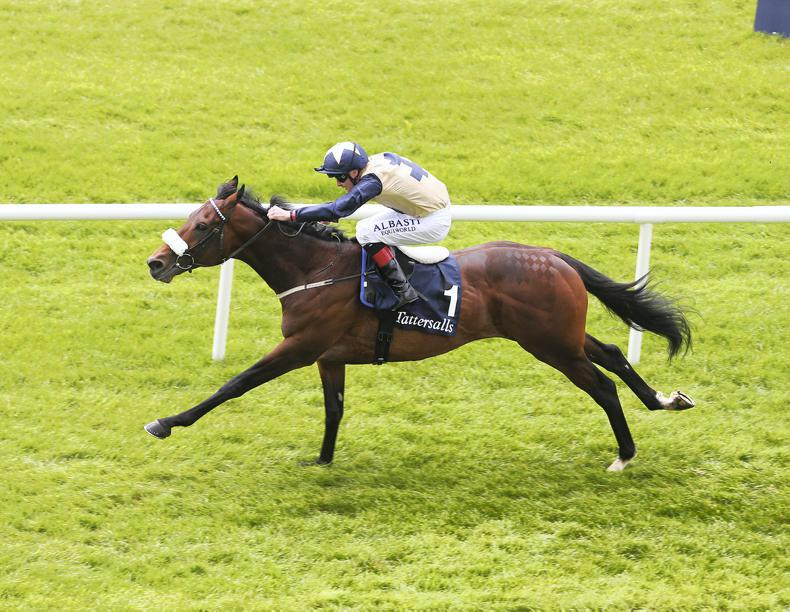 SIRE REVIEWS: Standing at Ballylinch Stud : Fascinating Rock