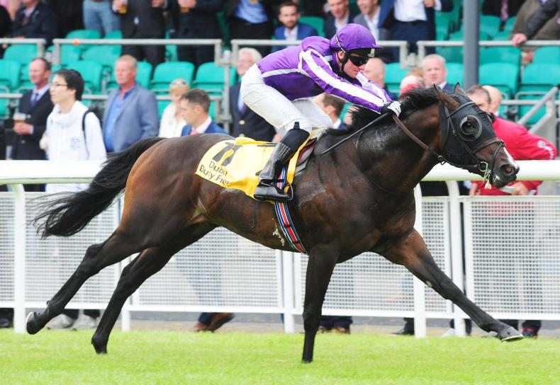 SIRE REVIEWS: Standing at Coolmore Stud : U S Navy Flag