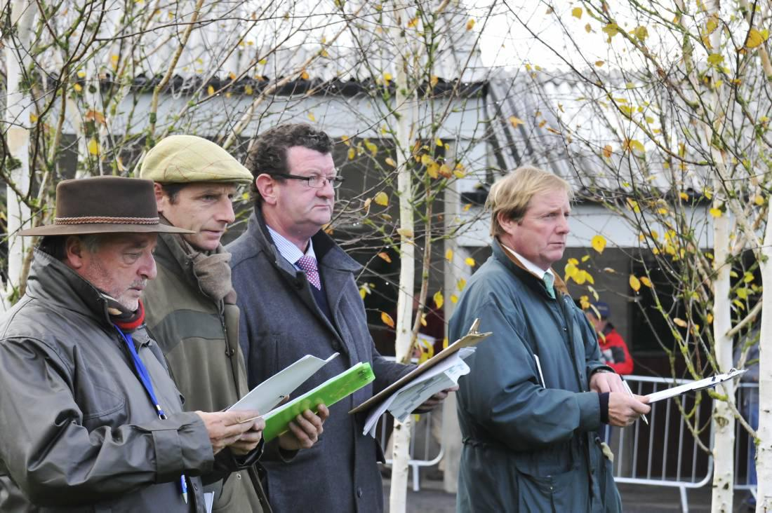 Simon Kerins: Broodmare numbers are just right for market demand