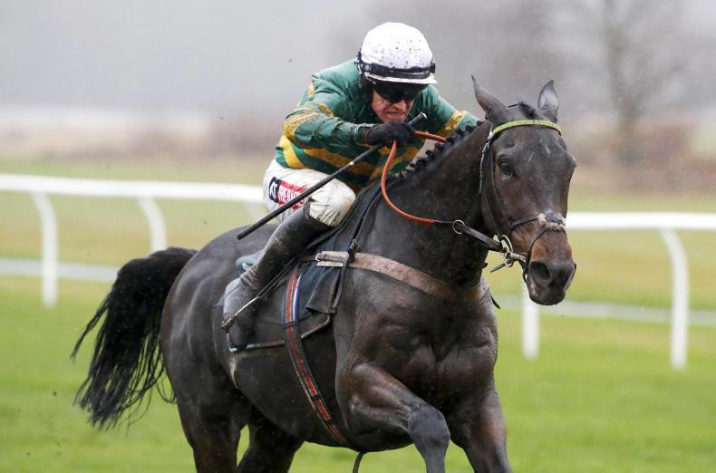Buveur D'Air ready for Contenders Hurdle prep