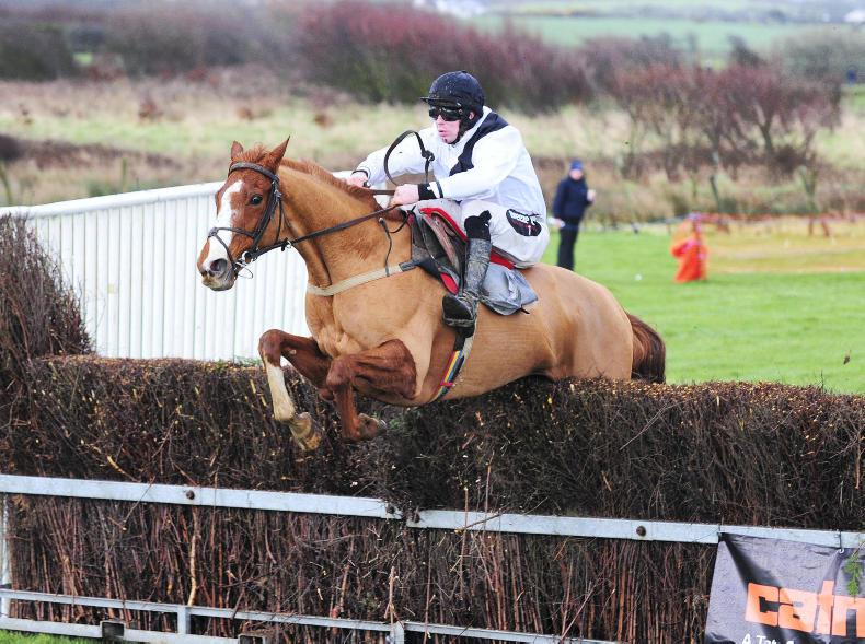 EAST DOWN FOXHOUNDS: TYRELLA SATURDAY: Three Kings obliges