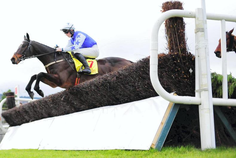 Kemboy and Road To Respect may meet again in Irish Gold Cup