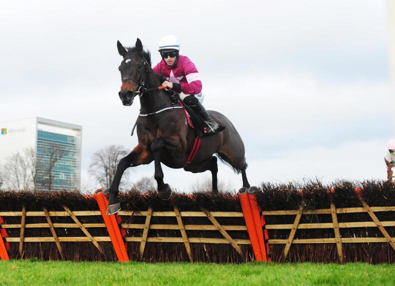Apple's Jade tops six chasing Irish Champion Hurdle crown