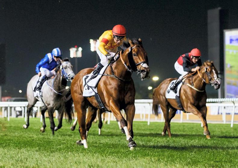 INTERNATIONAL RACING: O'Shea, Seemar and Charpy all in winning form