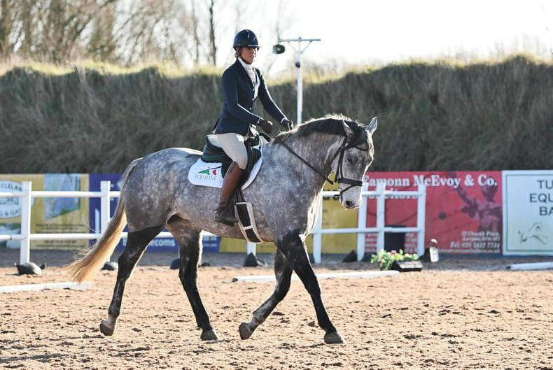 FLEXI EVENTING:  Double comes up for busy Magill