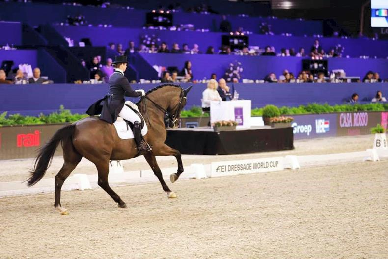 DRESSAGE:  Reynolds breaks 80% to set new Irish record