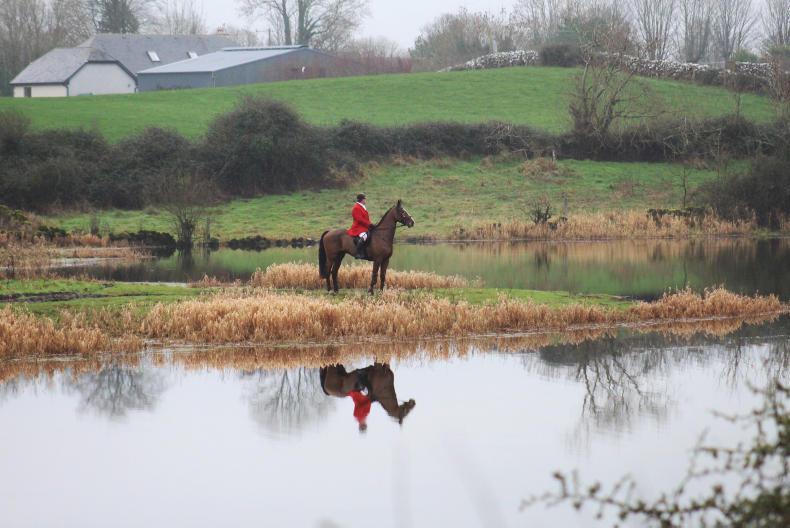 IRISH HORSE WORLD FIXTURES, FEBRUARY 9th 2019