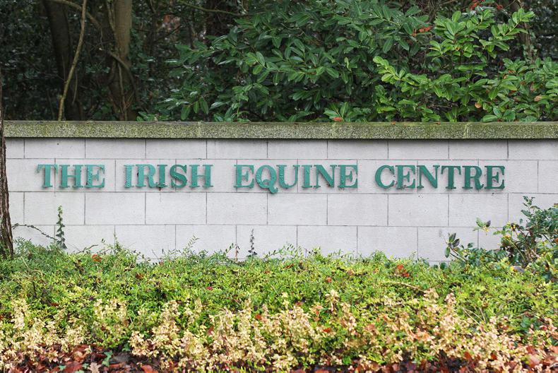 EQUINE FLU: Irish Equine Centre and ITBA publish advice for horse owners