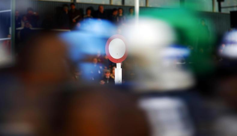 EQUINE FLU: Cheltenham cancellation is 'unthinkable'