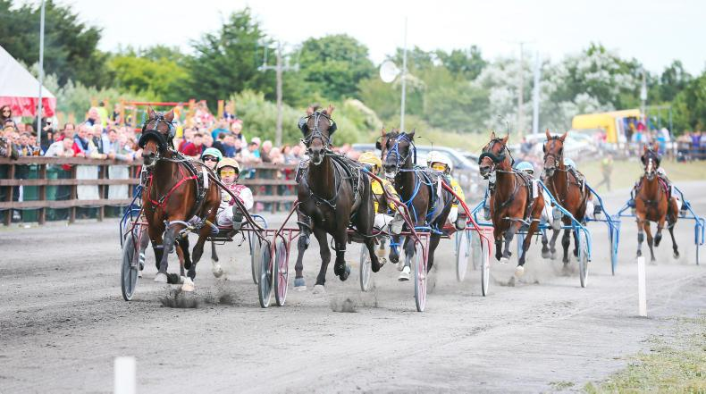 HARNESS RACING: All eyes on Vincent Delaney weekend
