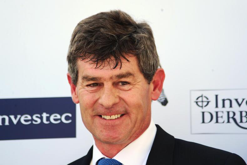 EQUINE FLU: Four horses in Simon Crisford yard test positive