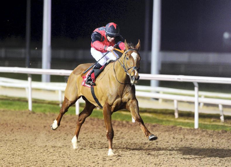 DUNDALK FRIDAY: Numerian swoops late at Dundalk