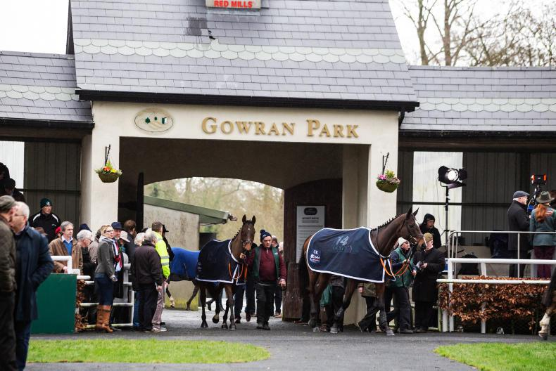 NEWS: Presenting Percy all set for Gowran challenge