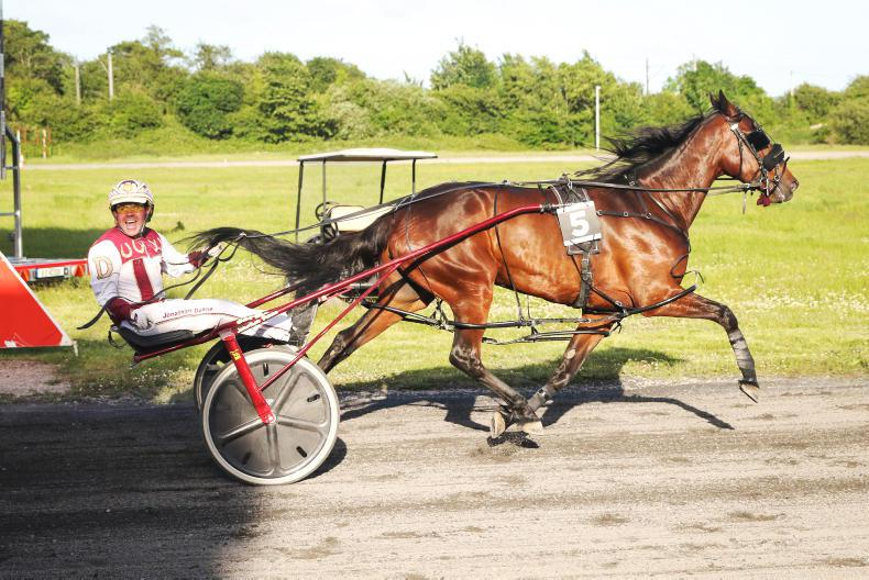 HARNESS RACING: The leaning demon spill the beans