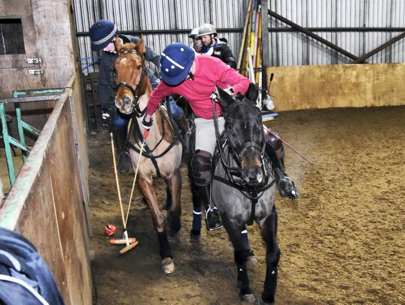AROUND THE COUNTRY:  All to play polo for at Gransha