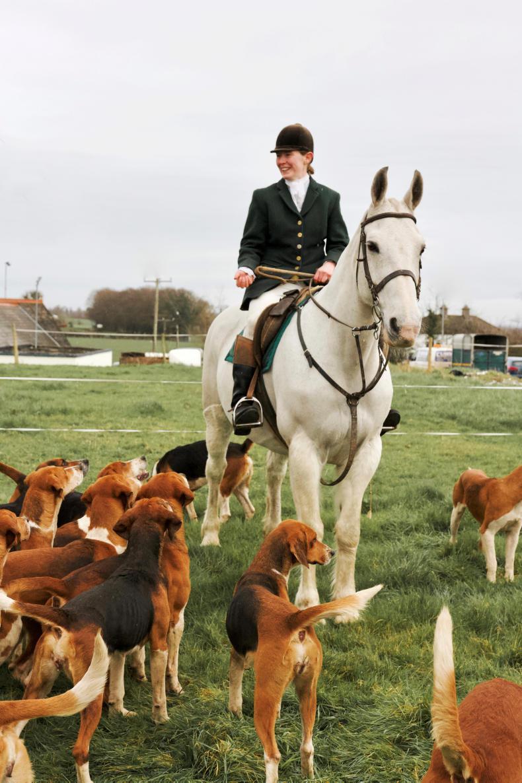 IRISH HORSE WORLD FIXTURES, FEBRUARY 16th 2019