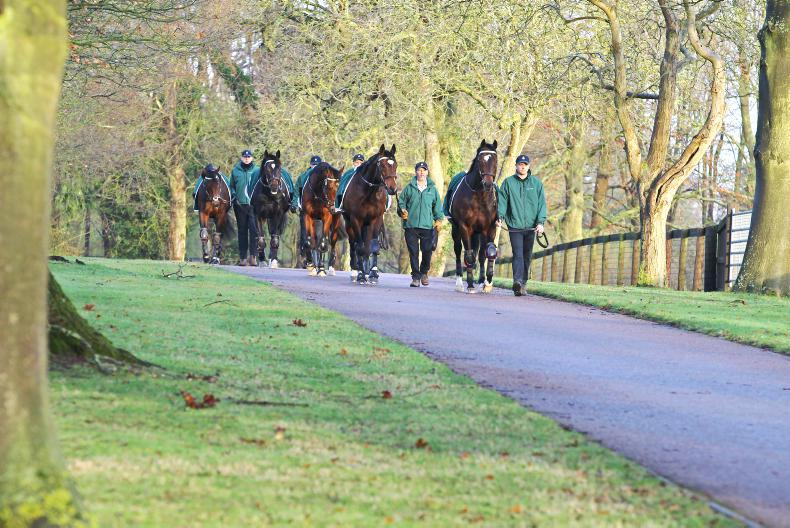 BREEDING INSIGHTS: Juddmonte sticks with successful formulas
