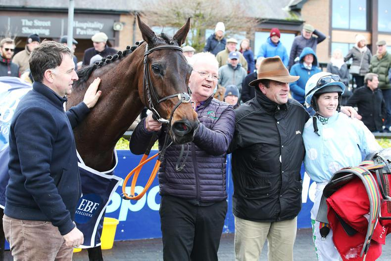 BREEDING INSIGHTS: Mares steal the show as Ireland is in the spotlight