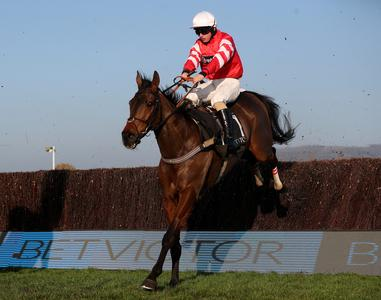 Gold Cup hero Coneygree retired after Ascot run