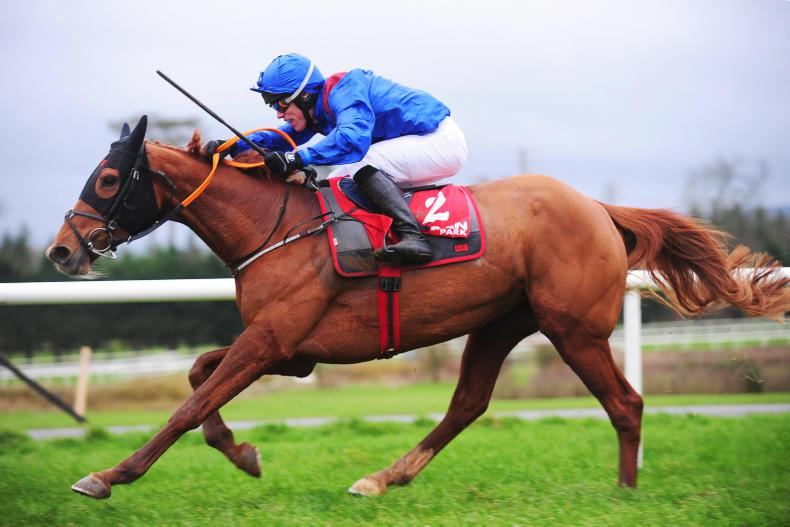 GOWRAN PARK SATURDAY: Monalee impresses at Gowran