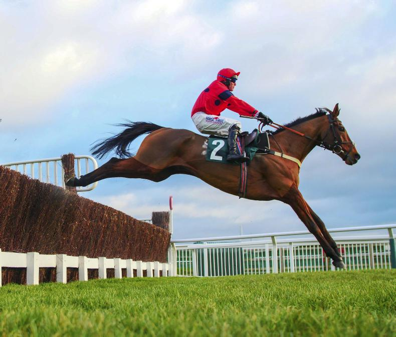 BRITAIN: Robinsfirth stays on stoutly