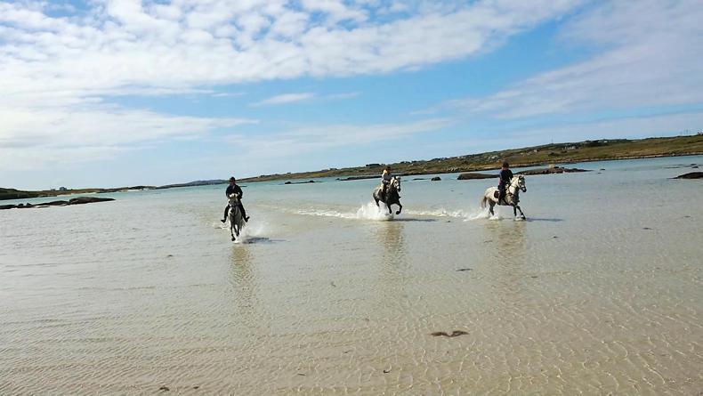 HOLIDAY FEATURE 2019: Connemara Equestrian Escapes