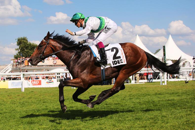 SIRE REVIEWS: Standing at Lanwades Stud : Sea The Moon