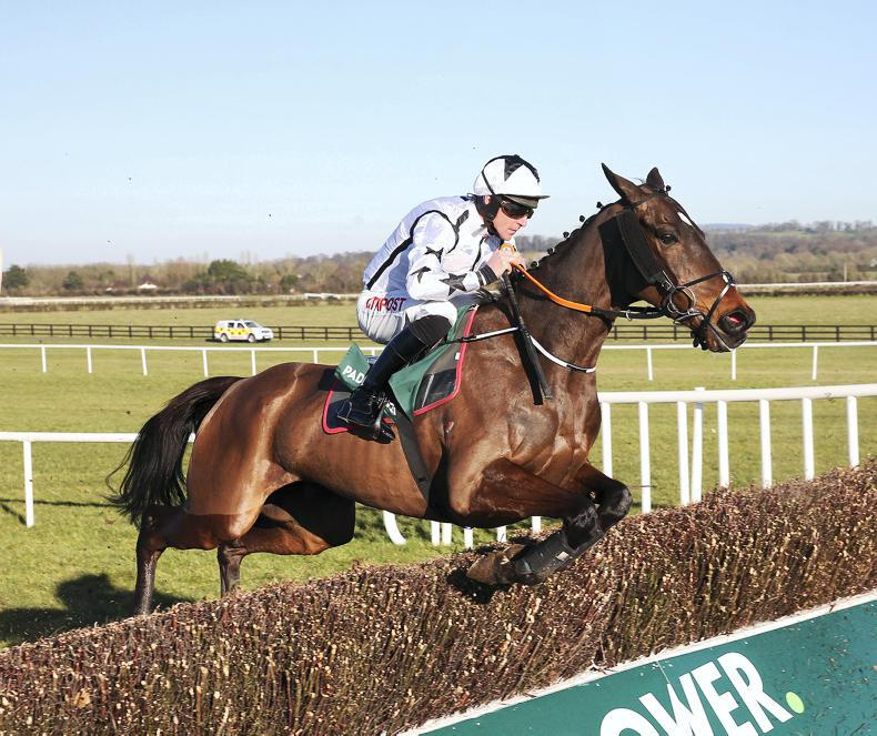 NEWS: Naas all set for Paddy Power Cheltenham Trials Day
