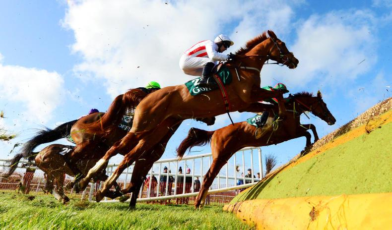 PUNCHESTOWN SUNDAY: Power Of Pause powers home