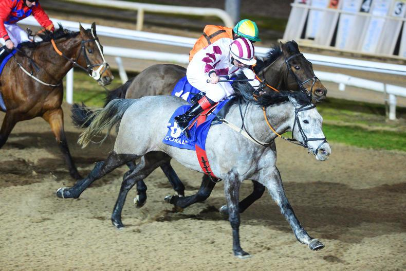 DUNDALK FRIDAY: Togoville enters the history books