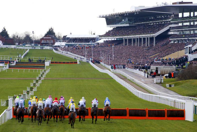 TALKING TRAINERS: Cheltenham clues