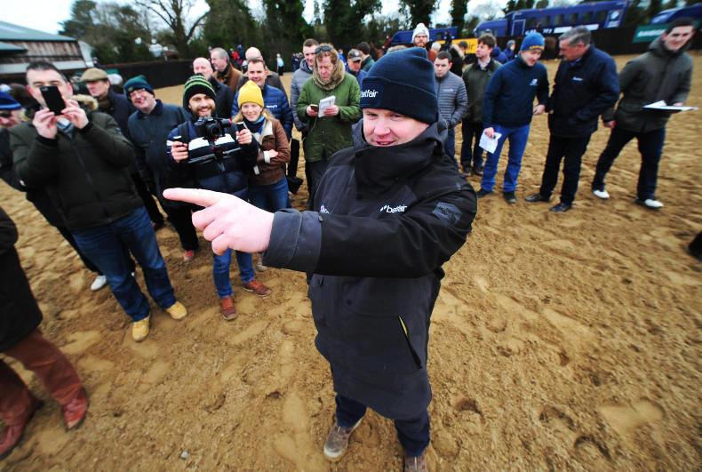 TALKING TRAINER: Elliott's army are on their way