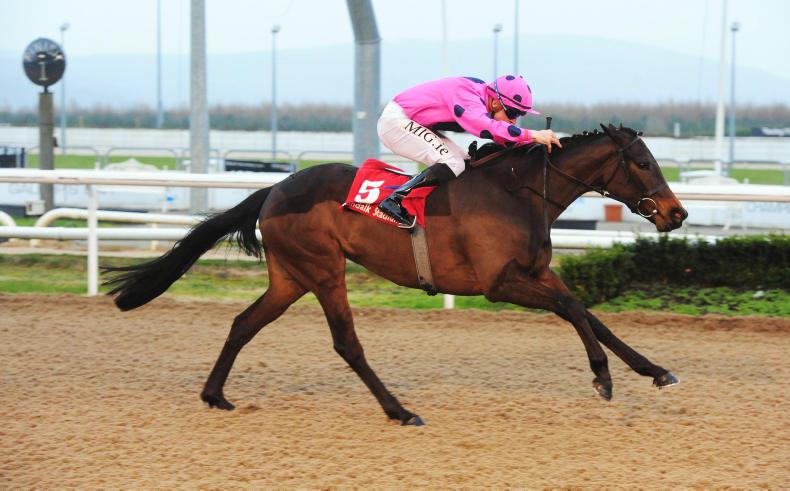 DUNDALK FRIDAY: Ice Bullet pulls off a gamble