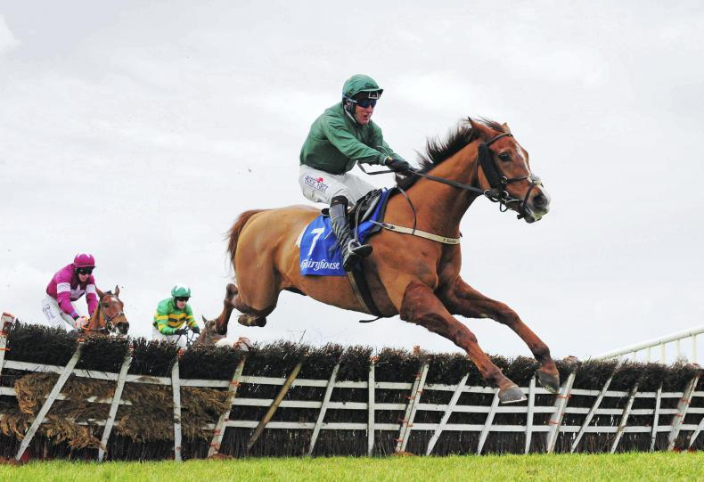 FAIRYHOUSE SATURDAY: Rathvinden puts in a flawless display