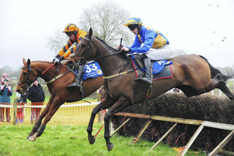 DUHALLOW FOXHOUNDS: KILDORRERY SUNDAY: Givemylovetorose sails to victory