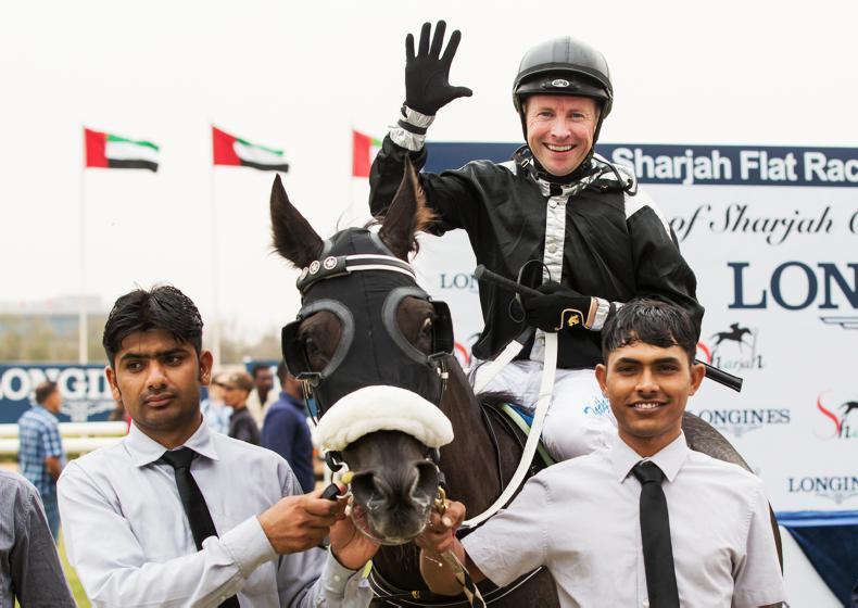 INTERNATIONAL RACING: O'Shea rides a landmark 500th winner in UAE