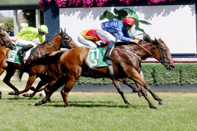 AUSTRALIA: Futurity Stakes win for Alizee