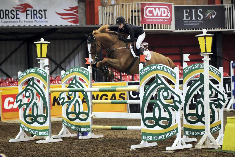 SHOW JUMPING: First Irish win for Barry