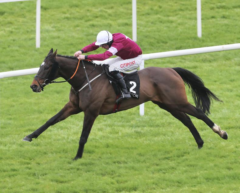 NAVAN SATURDAY: Duca De Thaix all set for Grade 3 contest