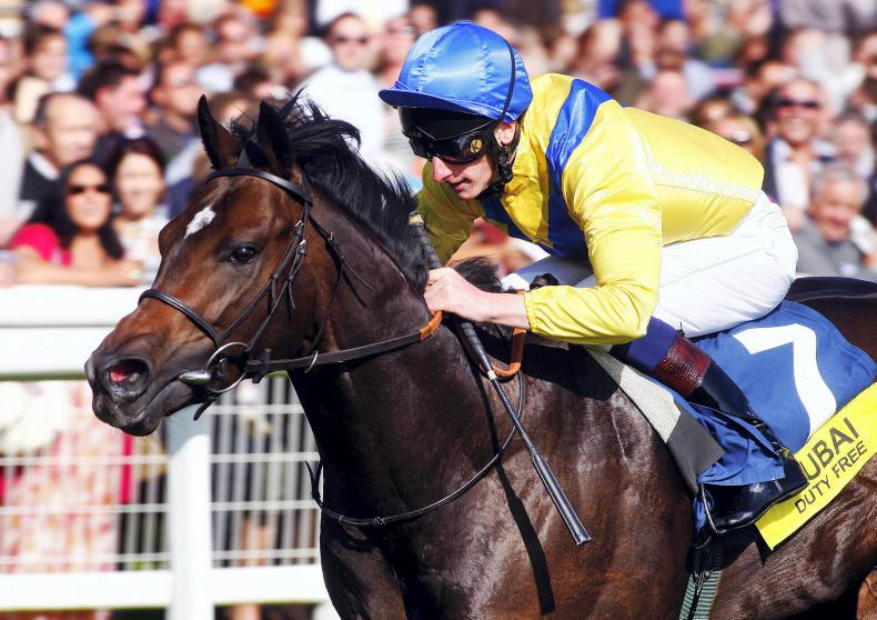 SIRE REVIEWS: Standing at Rathbarry Stud : Moohaajim
